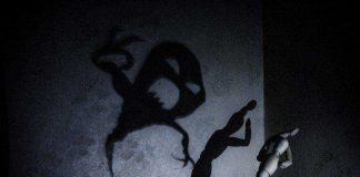 ShadowTestingForEntrepreneurs
